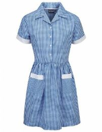 Ayr Gingham Dress